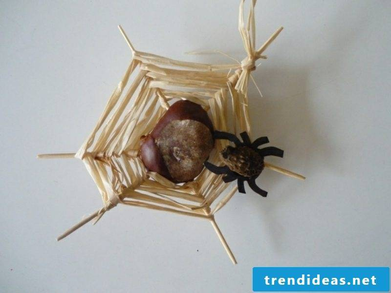DIY with acorns and chestnuts
