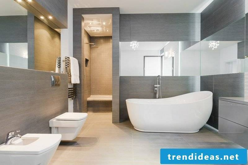 Bathroom set up modern ideas