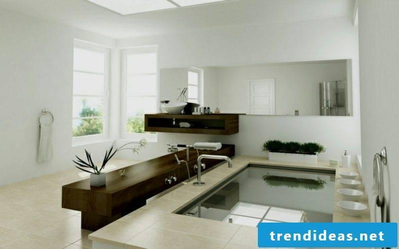 Bathroom modern huge bathtub