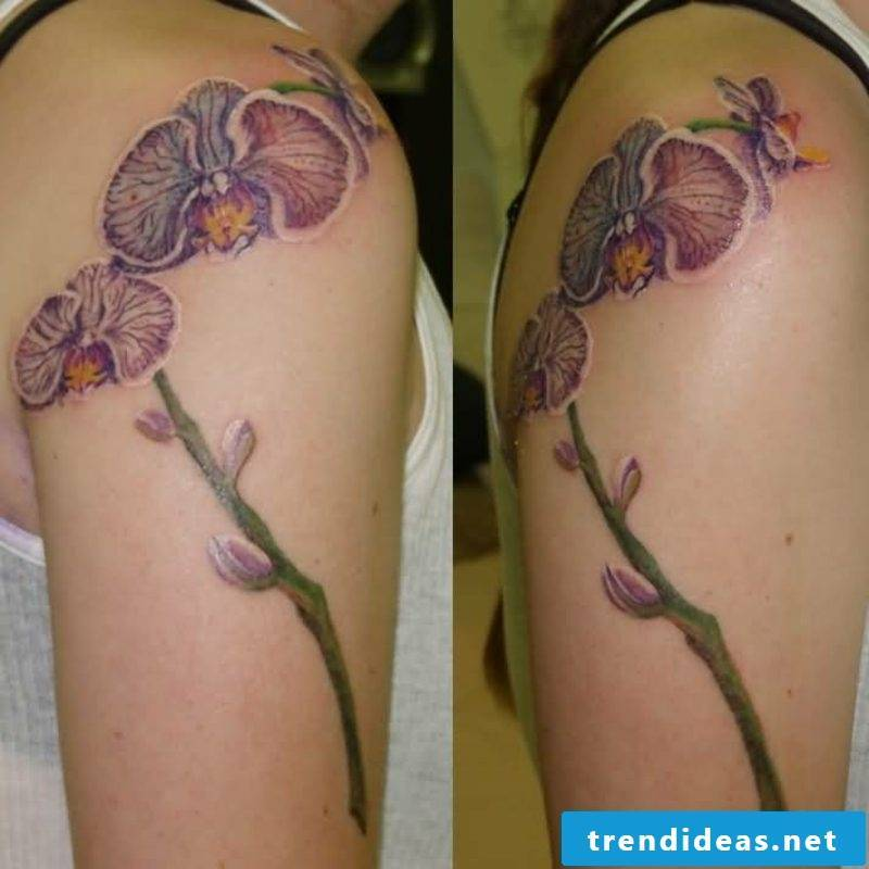 orchids tattoo shoulders