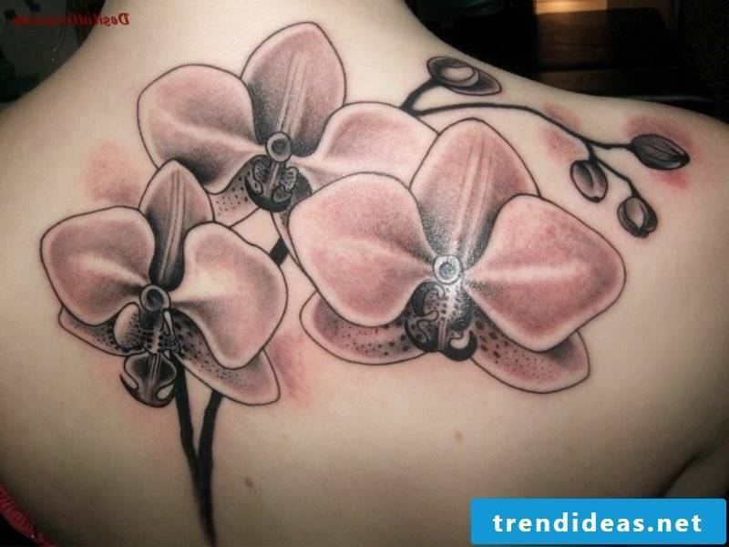 orchids tattoo gray ink