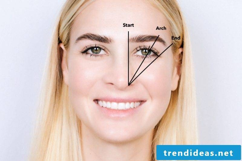 Which are the right eyebrow shapes for me