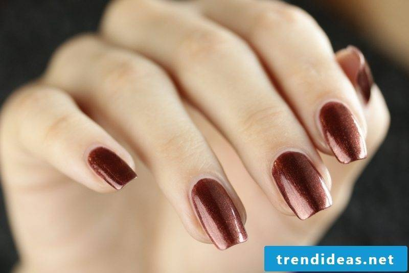 Color trends chocolate brown autumn