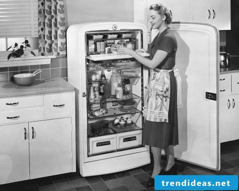 retro refrigerator bosch outdated