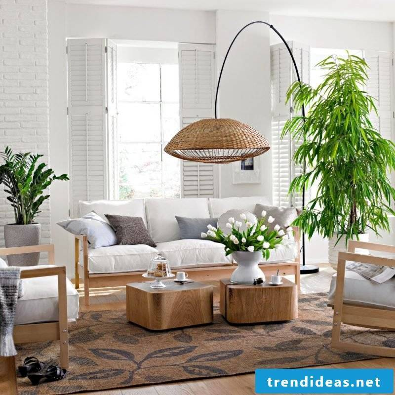 indoor plants are great