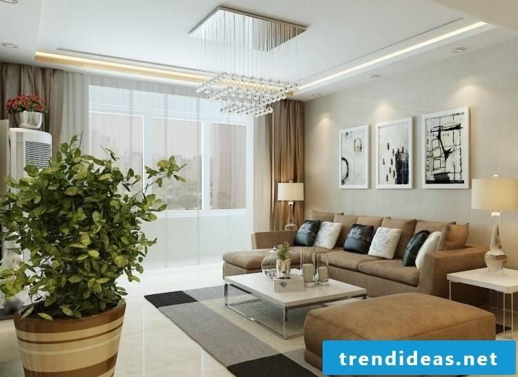Indoor plants determine excellent