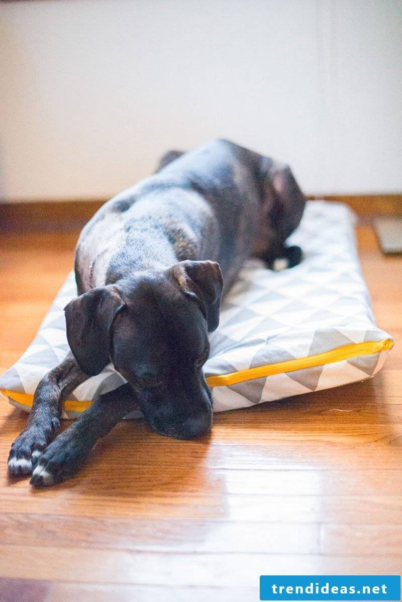 Sewing presents - dog pillow