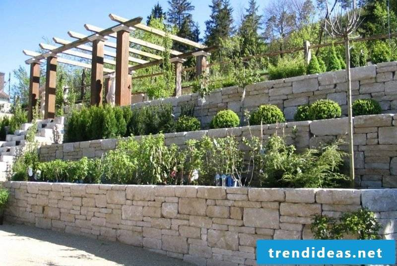 interesting stone wall gradually built planted garden