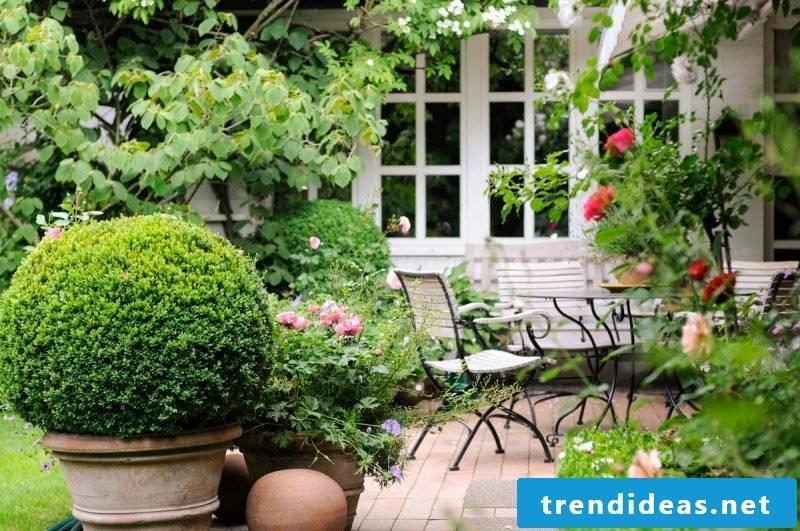 romantic terraced planting