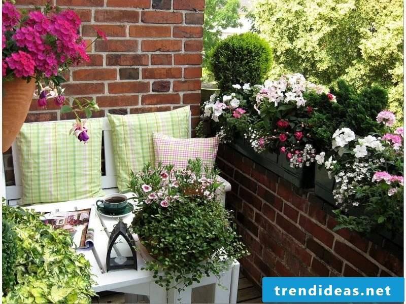 original terraced planting