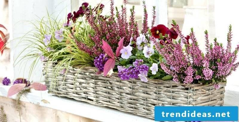 beautiful flowers terrace design