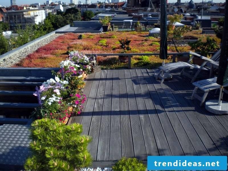 terrace Greenery