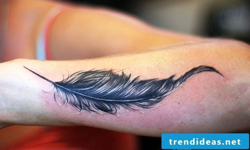 realistic feather tattoo on the arm