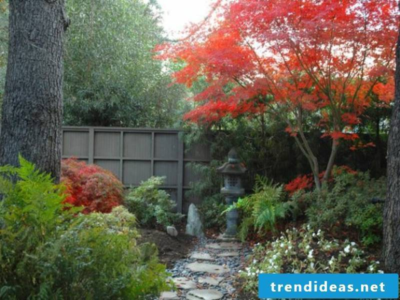 Red color in the Japanese garden