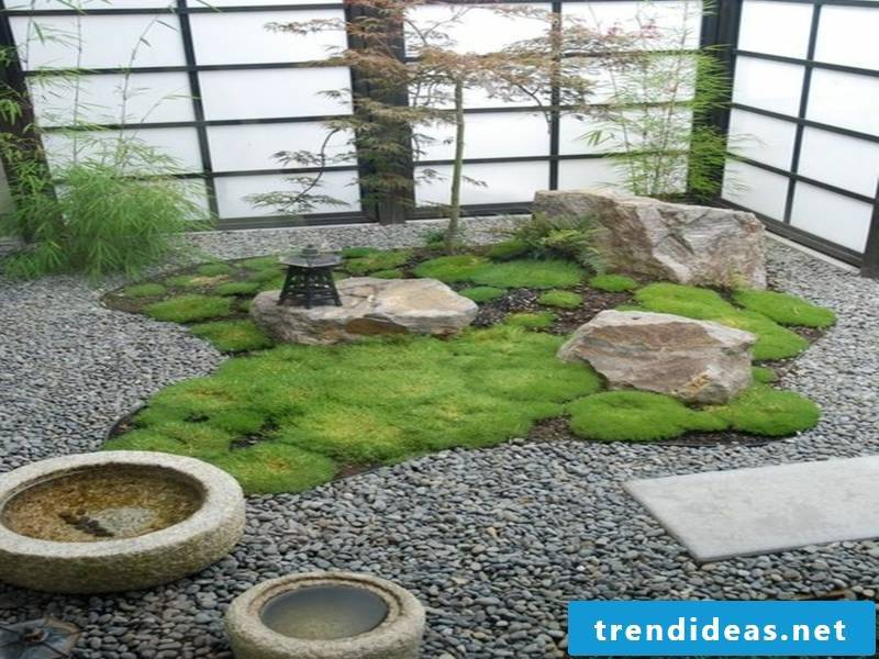 Organized Japanese garden in the house