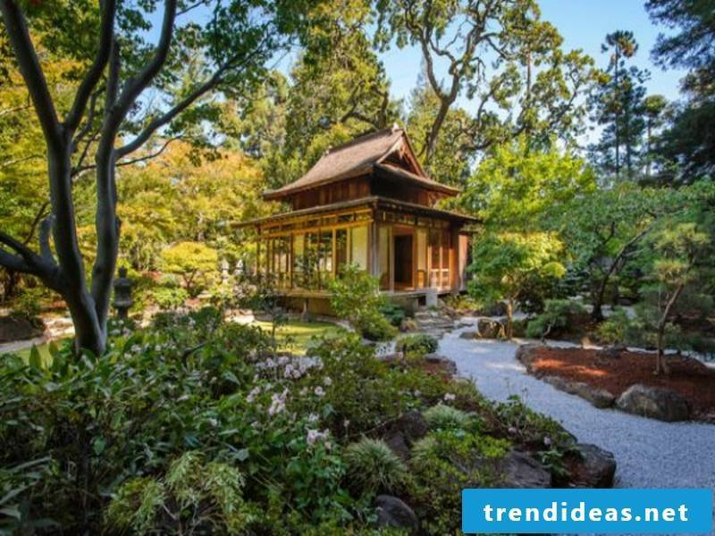 Eclectic in the Japanese garden
