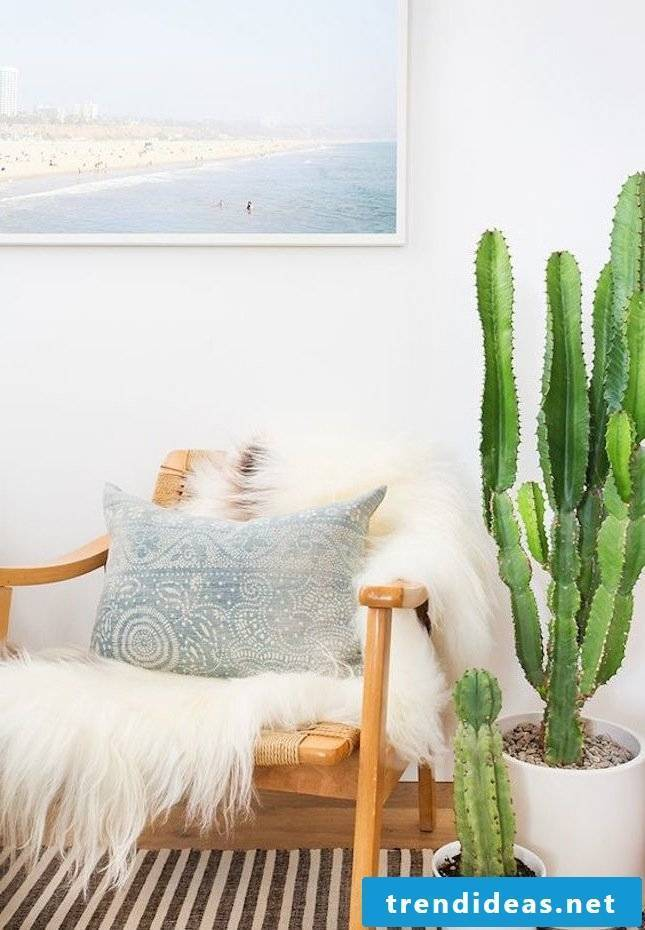 Cactus flower decoration for your home decorating ideas