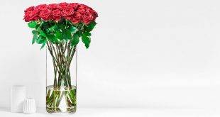 The right flowers for Valentine's Day: meaning