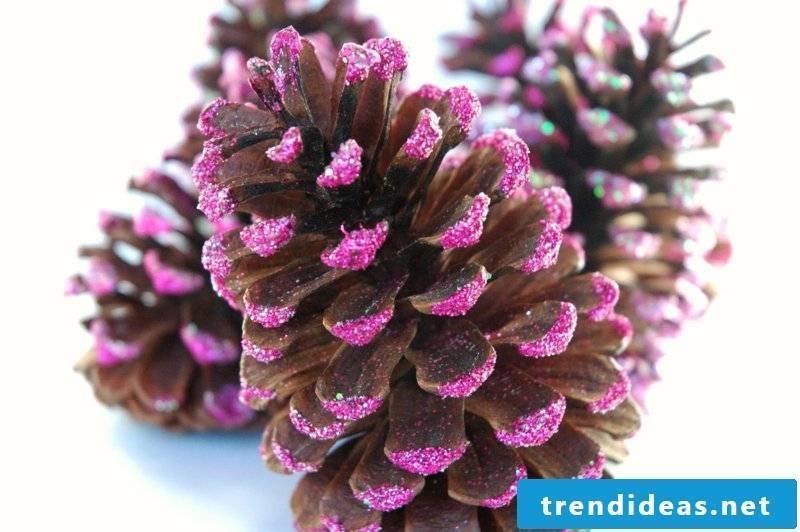 Tinker with pine cones purple