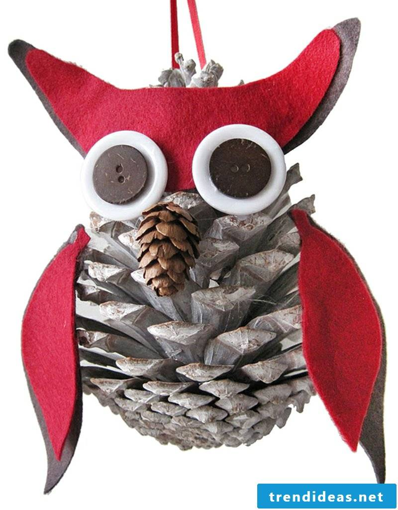 Tinker with pinecone owl