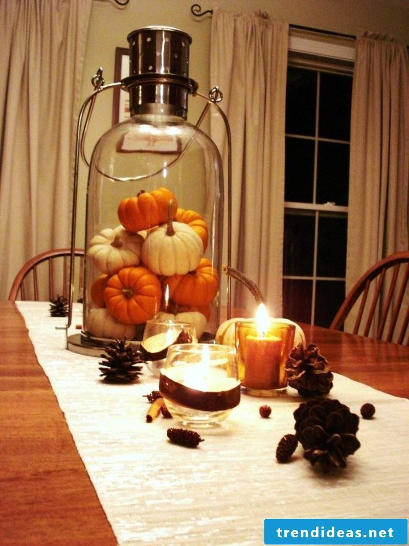 Fall table top mini pumpkins