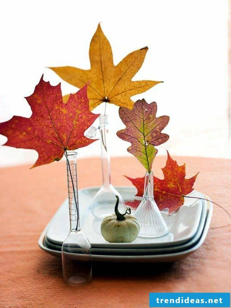 Pictures of autumn table decoration ideas