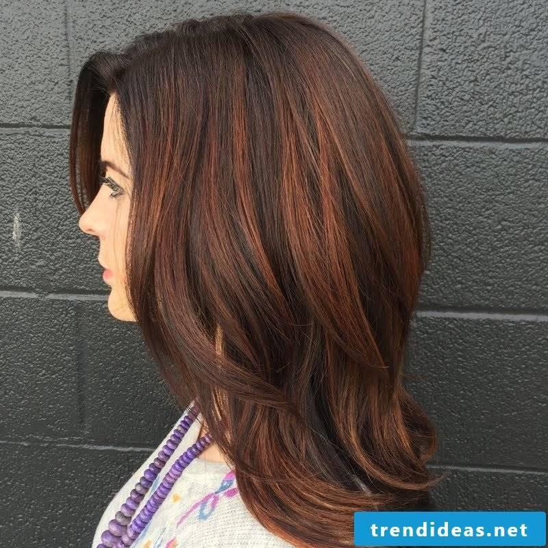 Copper brown Hair color Dark colored