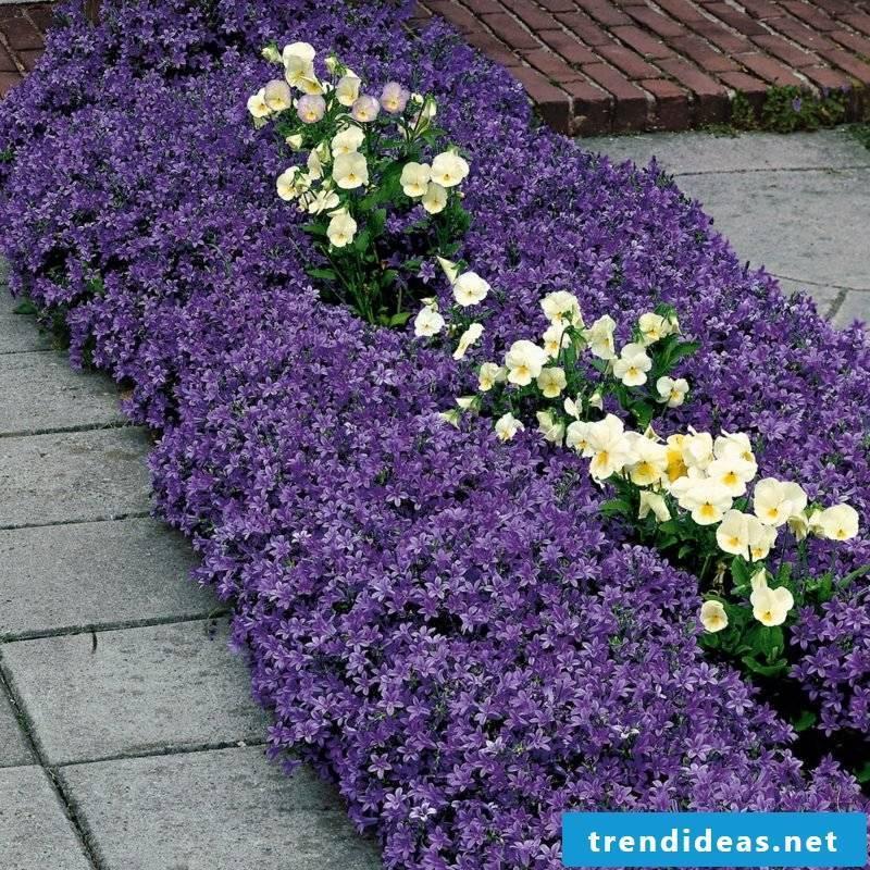 Garden design Flowerbed Upholstery