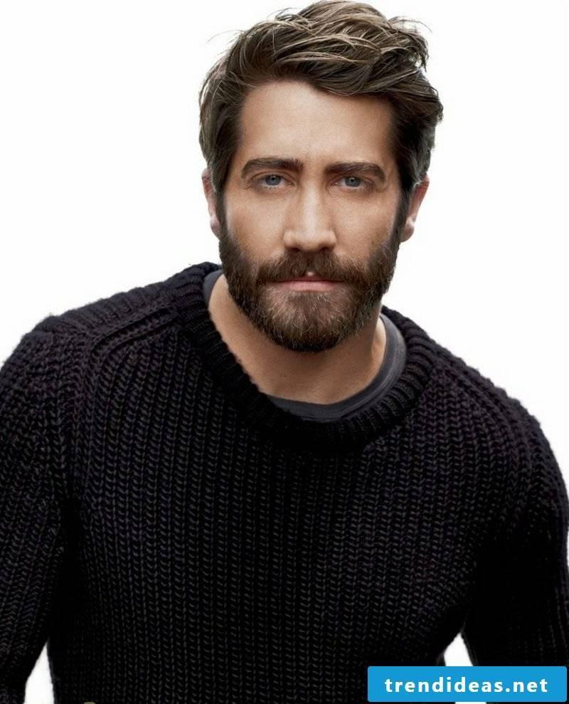 Men's Hairstyles 2017 Full Beard