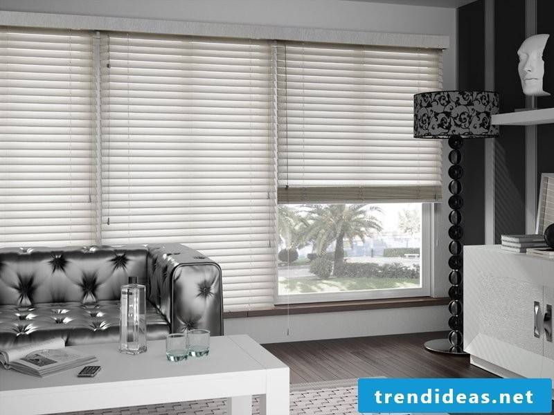 White wooden blinds and chrome colors in the living room