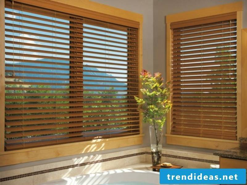 Green plant in the bathroom and wooden blinds look great together